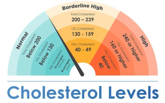 Everything You Need to Know About High Cholesterol